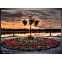 Glas schilderij Bloemen | Rood, Zwart, Geel