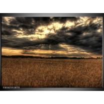Glas schilderij Natuur | Bruin, Grijs, Geel