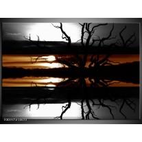 Foto canvas schilderij Bomen | Sepia, Bruin