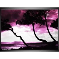 Glas schilderij Natuur | Paars, Zwart, Wit