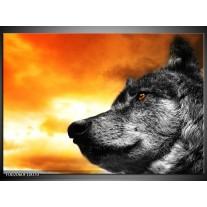 Foto canvas schilderij Wolf | Geel, Grijs, Wit