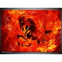 Glas schilderij Paard | Zwart, Oranje, Geel