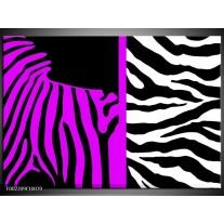 Glas schilderij Zebra | Paars, Zwart, Wit