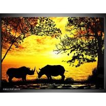 Glas schilderij Natuur | Oranje, Zwart, Bruin