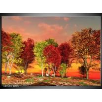 Glas schilderij Herfst | Rood, Bruin, Geel