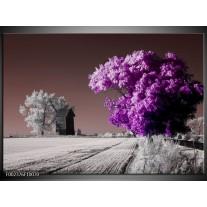 Glas schilderij Natuur | Paars, Wit, Grijs