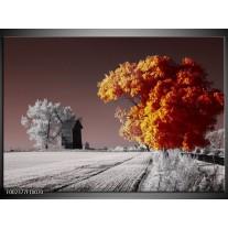 Glas schilderij Natuur | Geel, Grijs, Wit