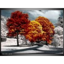 Foto canvas schilderij Natuur   Geel, Oranje, Wit