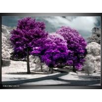 Foto canvas schilderij Natuur | Paars, Wit, Grijs