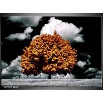 Glas schilderij Natuur | Bruin, Grijs, Zwart
