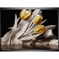 Glas schilderij Tulpen | Geel, Wit, Zwart