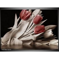 Glas schilderij Tulpen | Bruin, Wit, Zwart