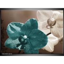 Glas schilderij Orchidee | Blauw, Wit, Grijs