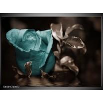 Glas schilderij Roos | Blauw, Wit, Grijs