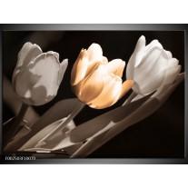 Foto canvas schilderij Tulp   Geel, Grijs, Wit