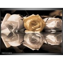 Glas schilderij Roos | Geel, Grijs, Wit