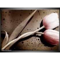 Glas schilderij Tulp | Bruin, Grijs, Wit