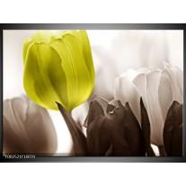 Glas schilderij Tulpen | Groen, Wit, Grijs