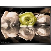 Glas schilderij Roos | Groen, Grijs, Wit