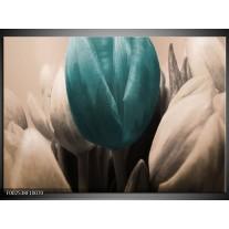 Glas schilderij Tulp | Blauw, Grijs, Zwart