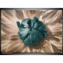 Foto canvas schilderij Bloem | Blauw, Wit, Grijs