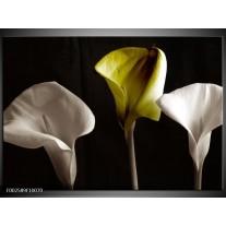 Glas schilderij Bloem | Groen, Wit, Zwart