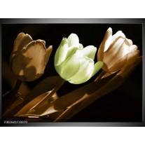 Foto canvas schilderij Tulp | Bruin, Groen, Zwart