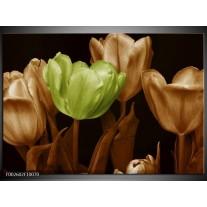 Glas schilderij Tulp | Bruin, Groen, Zwart