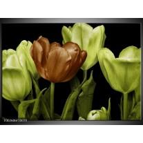 Glas schilderij Tulp   Groen, Bruin, Zwart