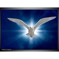 Foto canvas schilderij Vogel | Wit, Blauw