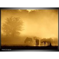 Foto canvas schilderij Natuur | Grijs, Geel, Bruin
