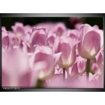 Foto canvas schilderij Tulpen | Roze, Wit