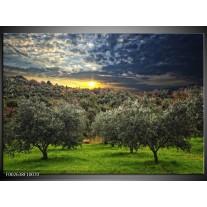 Glas schilderij Natuur   Groen, Geel, Blauw