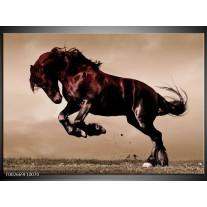 Glas schilderij Paard | Bruin, Grijs, Zwart