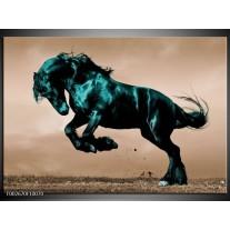 Glas schilderij Paard | Bruin, Blauw, Zwart