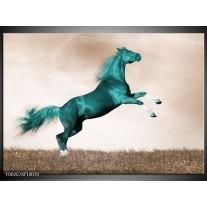 Glas schilderij Paard | Groen, Sepia