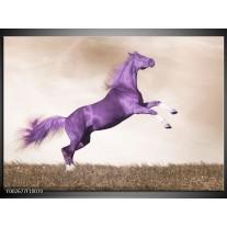 Foto canvas schilderij Paard | Paars, Sepia
