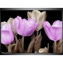 Foto canvas schilderij Tulp   Paars, Zwart, Grijs