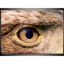 Glas schilderij Vogel | Bruin, Geel, Zwart