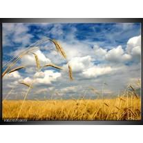 Glas schilderij Natuur | Wit, Geel, Blauw
