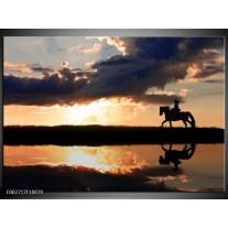 Foto canvas schilderij Natuur | Bruin, Zwart, Geel