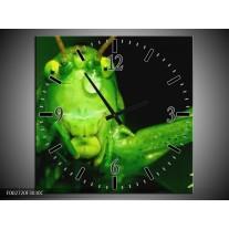 Wandklok op Canvas Sprinkhaan | Kleur: Groen, Zwart | F002720C