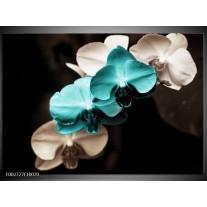 Glas schilderij Orchidee | Blauw, Zwart, Grijs