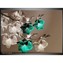 Glas schilderij Orchidee | Groen, Bruin, Grijs
