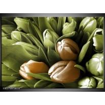 Glas schilderij Orchidee | Bruin, Groen, Zwart