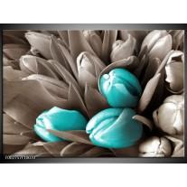 Glas schilderij Orchidee | Grijs, Blauw, Zwart