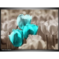 Glas schilderij Tulpen | Blauw, Grijs