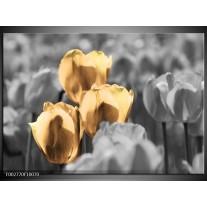 Glas schilderij Tulpen | Goud, Wit, Grijs