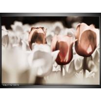 Glas schilderij Tulpen | Bruin, Grijs, Wit