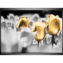 Glas schilderij Tulpen | Goud, Grijs, Wit